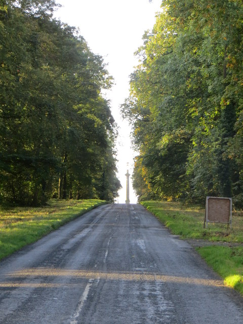 Road through Monument Plantation