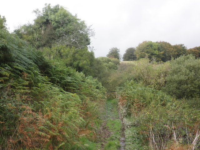 Path to Tripp Farm