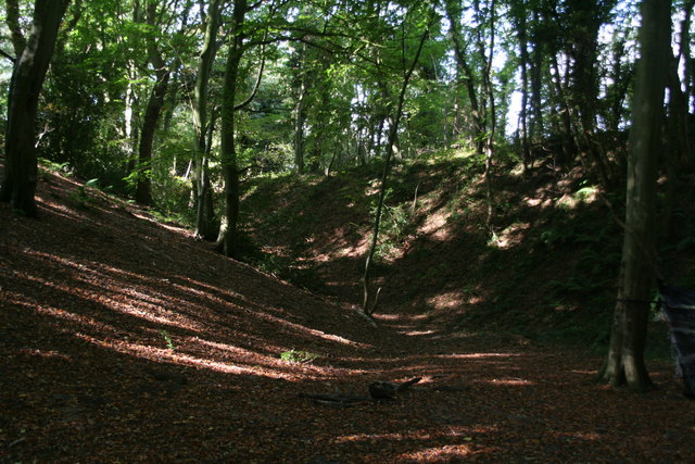 Holt: Common Hills Plantation and the disused railway