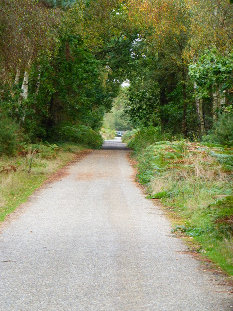 Long straight path on Yately Common