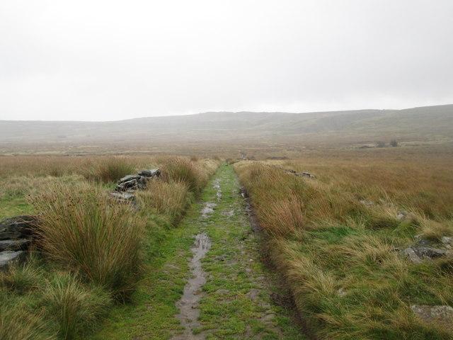 White Moor Lane