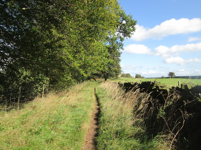 Bridleway east of Manywells Height