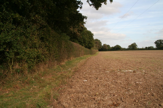 Well trimmed hedge by the footpath past Horse Pit