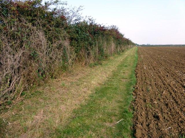 Field path near Nettleham