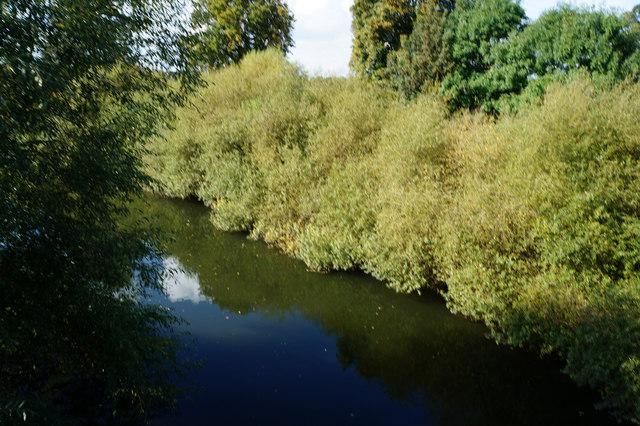 River Swale from Myton Bridge, Myton-on-Swale