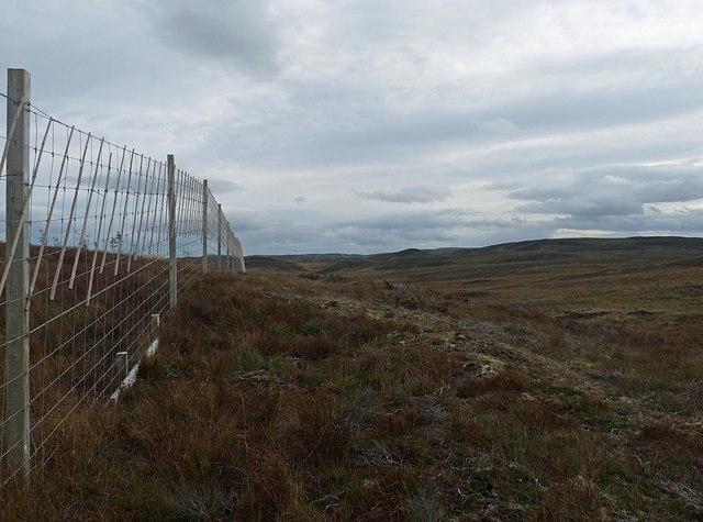 Deer fence above Allt Leacach, Sutherland