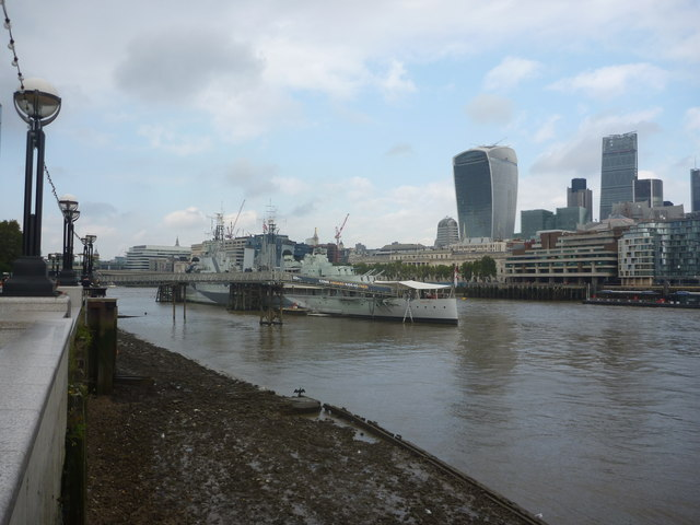 London Cityscape : Cormorant Drying Wings