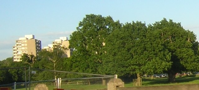 Alton Estate point blocks from Richmond Park