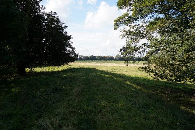 Site of Myton Battle 1319