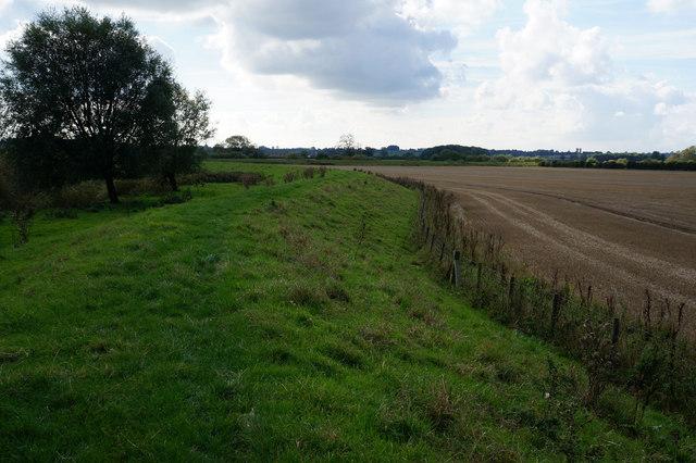 Path at Myton Pasture Clough