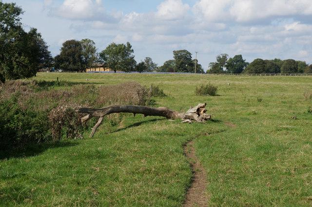 Path towards Ellenthorpe Hall