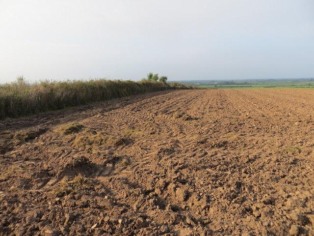 Ploughed Field at the Triangulation Pillar near Tarnrigg Moor