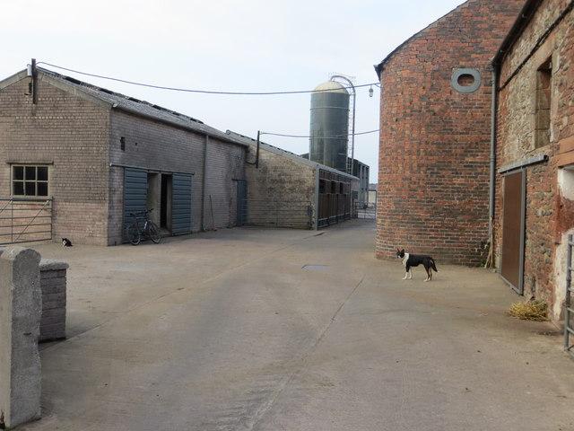 Farmyard at Lessonhall