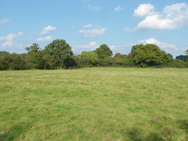 Footpath near Oldlands Copse