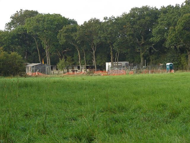 Field near Kiln Lane
