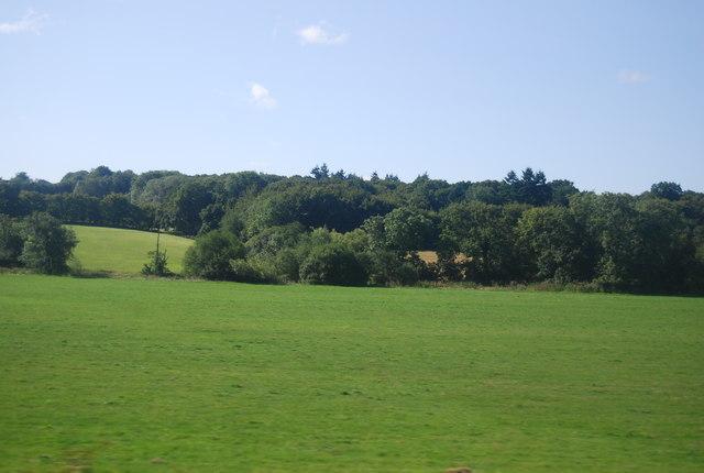 Near Crowhurst Bridge