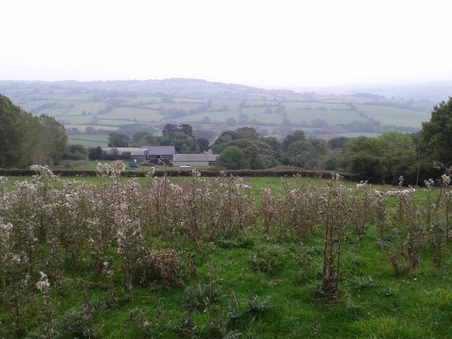 Looking down onto Oldcastle Court from the footpath