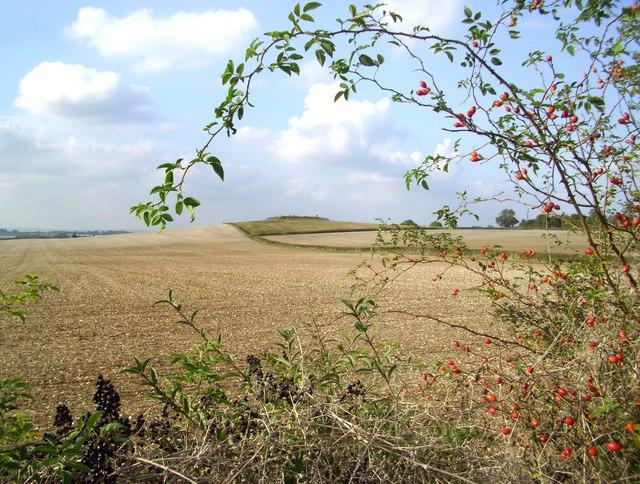 The Knapp from The Ridgeway