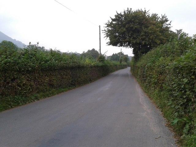 Lane to Longtown