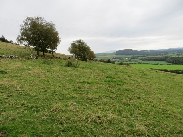 Field View from the edge of Brownmoor Wood