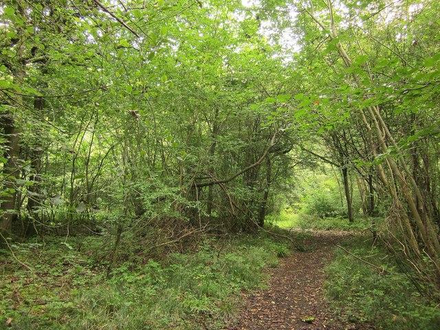 Path near Plumbers Trench