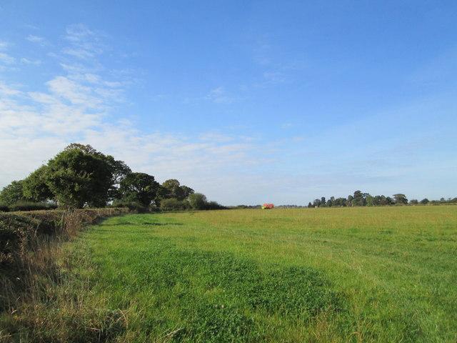 Field near Burleydam