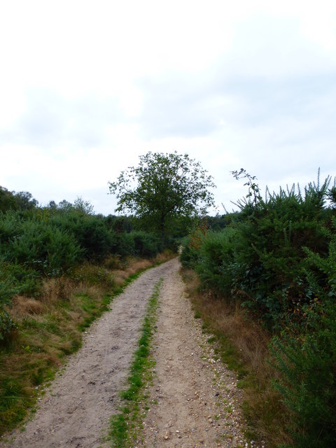 Bridleway heads towards parking area
