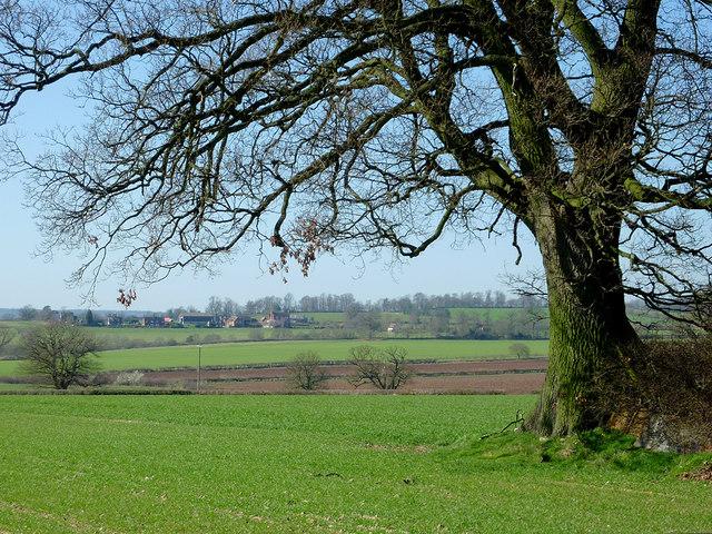 Farmland west of Catstree, Shropshire
