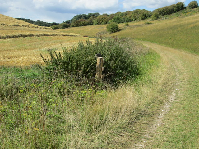 Bridleway between Hippenscombe. and Scot's Poor