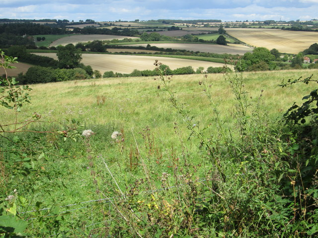 Downs view from a road leading to Fosbury Farm