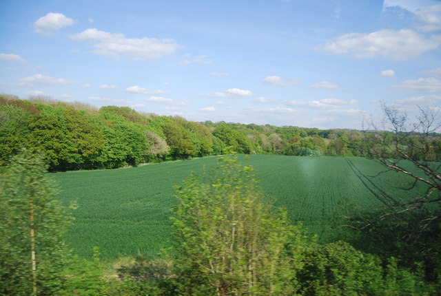 View from the Mole Valley Line