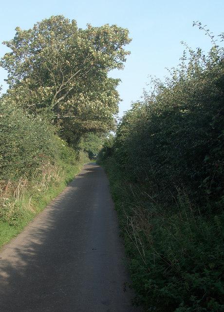 Marlpit Lane