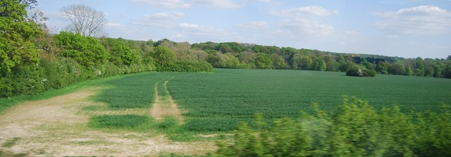 Farmland by the Mole Valley Line