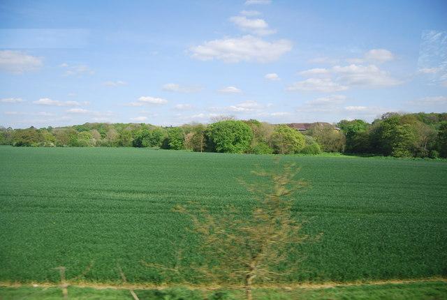 Farmland by the Mole Valley Line