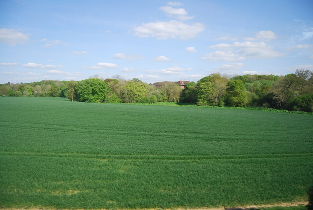 By the Mole Valley Line
