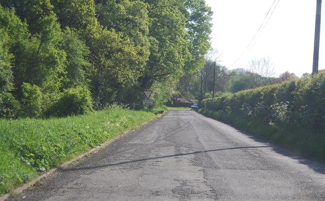 A24 ahead
