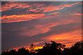 TQ2995 : Sunset in London N14 : Week 40