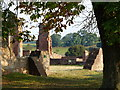 SK5310 : Inside the ruins of Bradgate House by Mat Fascione