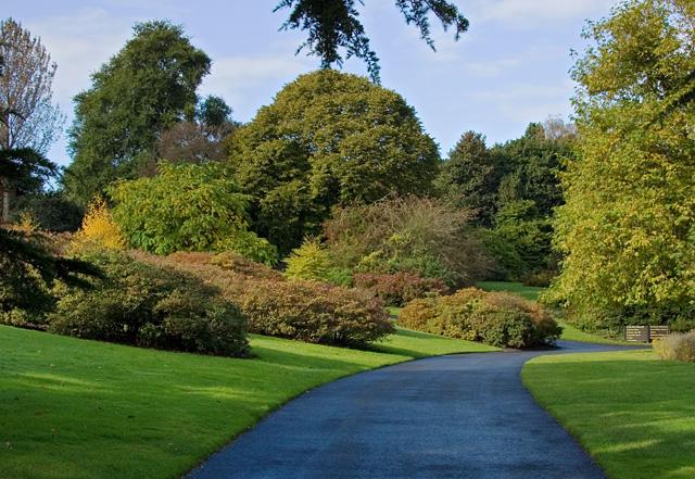Royal Botanic Garden Edinburgh Paul Harrop Geograph Britain And Ireland