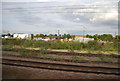 TL1899 : Peterborough sidings by N Chadwick