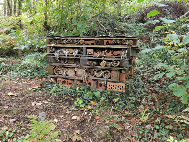 an image of bug%20hotel%20 A bug hotel