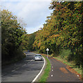 TL4952 : Near Wandlebury in October by John Sutton