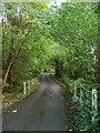 TQ2722 : Buncton Lane by Simon Carey