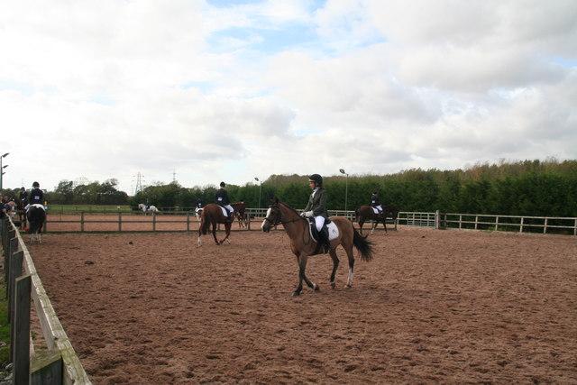Картинки по запросу British Riding Club