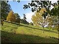 SO6854 : Track, Brockhampton Park : Week 42