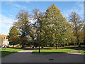 TR1557 : Canterbury Cathedral precinct in autumn by Stephen Craven