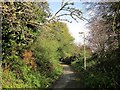 SX5058 : Plymbridge Road by Derek Harper