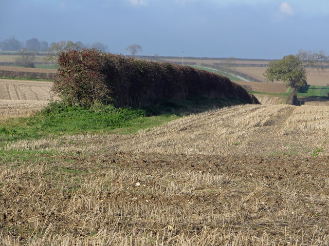 Stubble Fields near Barton Upon Humber