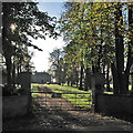 TL4265 : The entrance to Westwick Hall by John Sutton