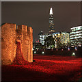 TQ3380 : Blood Swept Lands and Seas of Red, Tower Poppies by Oast House Archive